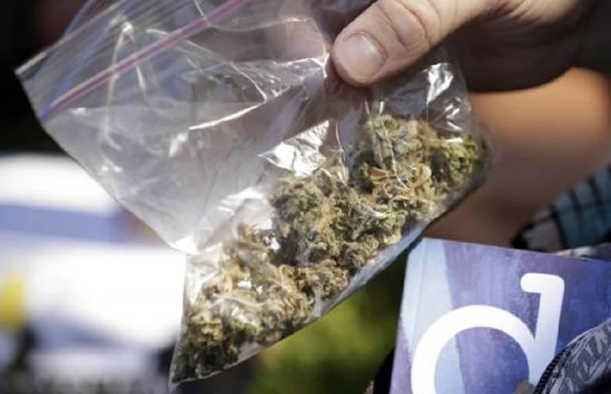 Как пронести марихуану в самолете конопля стебель фото
