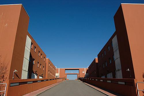 L'università calabrese batte un colpo