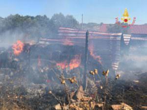 Squillace, va a fuoco una stalla: i vigili salvano gli animali